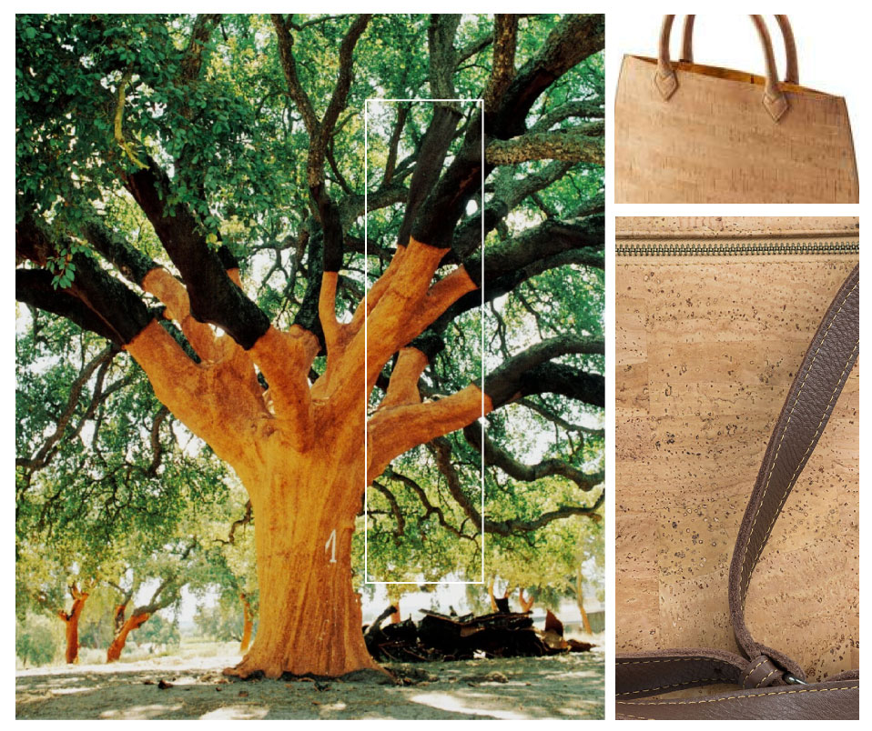 cork-tree-bag